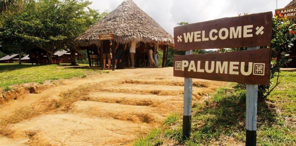 palumeu_tourbox11